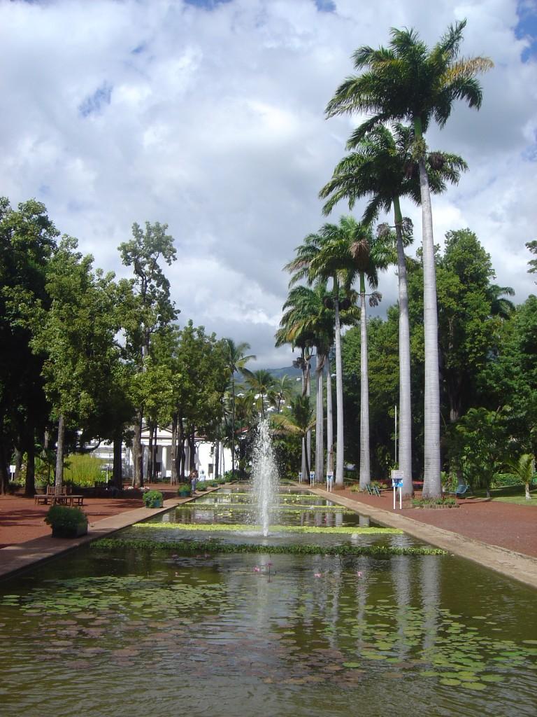 Jardin de l'Etat - Saint Denis - La Réunion